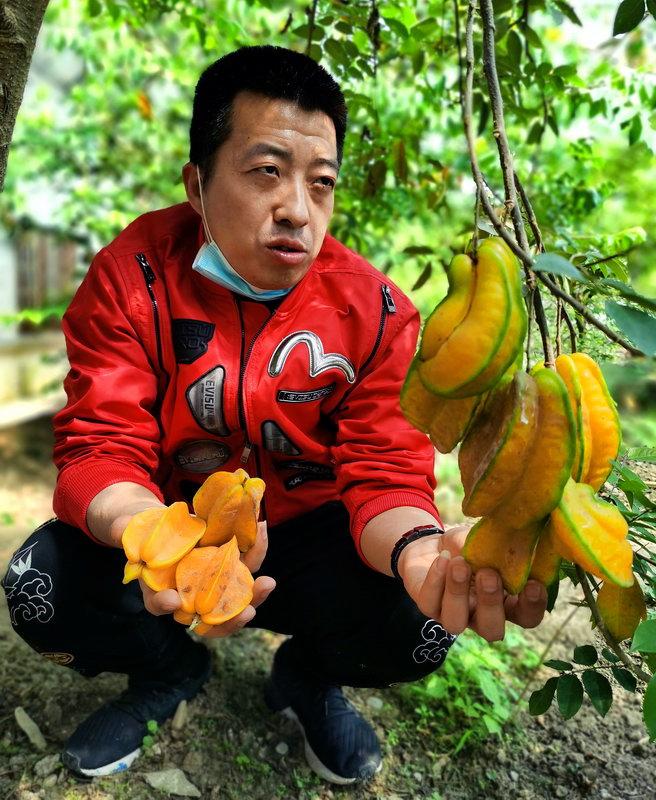 北京:景区有序恢复开放,采摘园草莓正红-新华图闻网